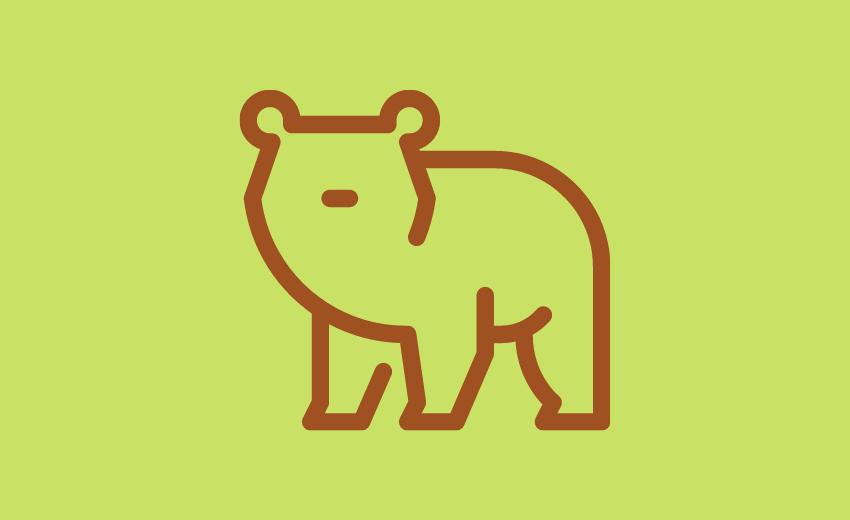 「クマ歩き」とはどんなもの?